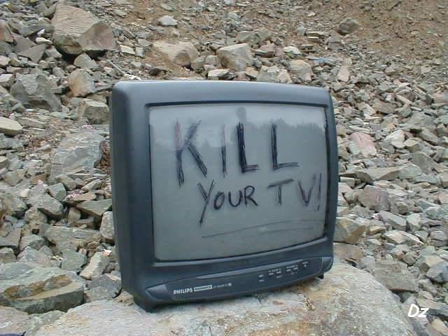 Об отсутствии ТВ для думающих и голосовании за гречку