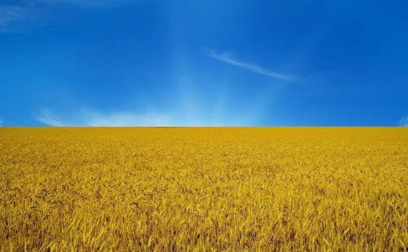 Украина придет к успеху