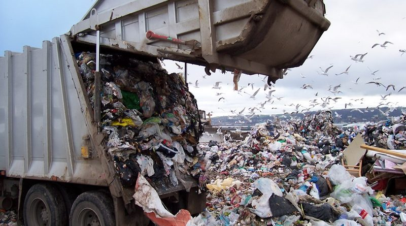 Про Львів, про садового, про сміття і про нас з вами