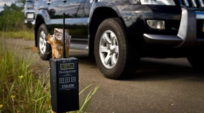 У зоні відчуження кіномайстри з Великобританії за допомогою фотопасток зафіксували більше тварин, ніж торік
