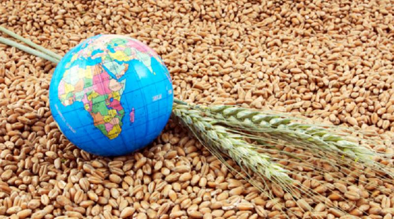 Україна в поточному маркетинговому році експортувала майже 4 млн тонн зернових культур