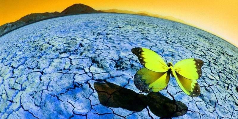 О Новых санкциях и Эффекте бабочки