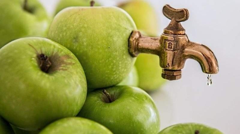 Плодово-ягідна продукція та її переробка – цікава ніша для малого та середнього агровиробника