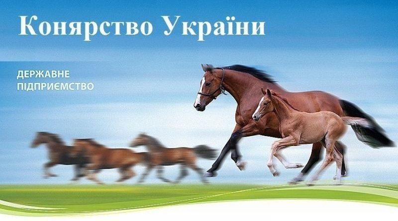 Повідомлено про підозру директору однієї з філій ДП «Конярство України» за фактом розтрати майже 900 тис грн