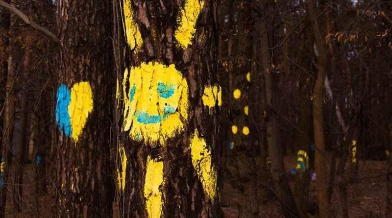 Вдалося попередити забудову земельної ділянки лісогосподарського призначення площею 15 га в місті-курорті Ірпінь