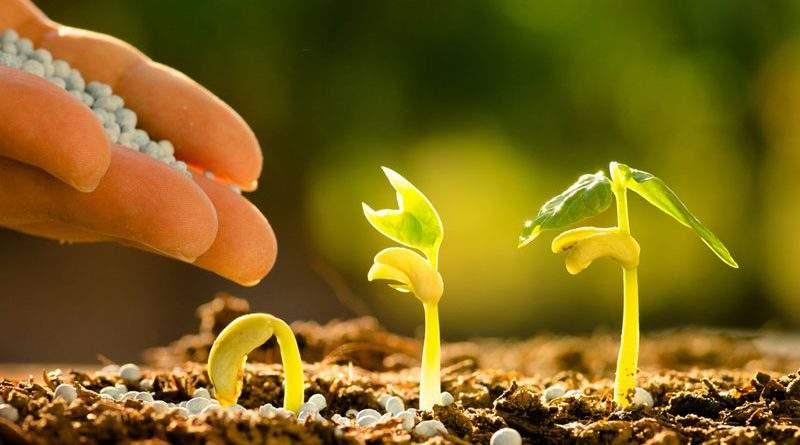 «Аграрний фонд» розпочинає весняну кампанію з продажу мінеральних добрив