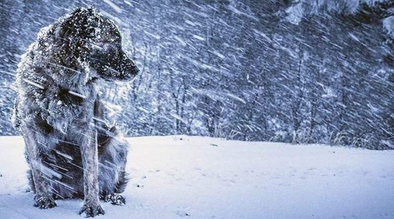 Увага! Попередження про погіршення погодних умов в Україні (документ)