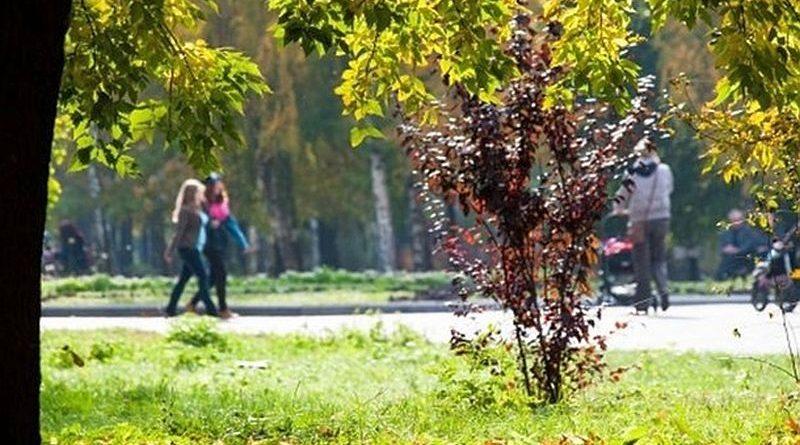Києву повернуто частину скверу по вул. Ризькій із півстолітніми деревами та дитячим майданчиком