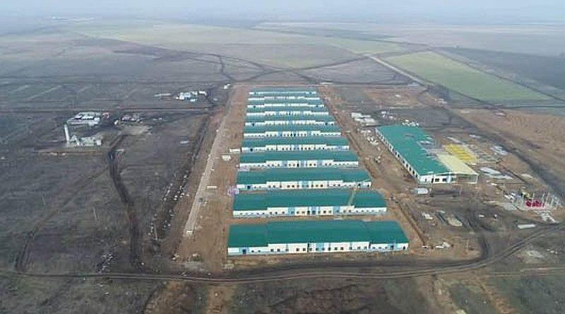 Попри все: в Україні триває будівництво унікального польового табору «Широкий Лан»
