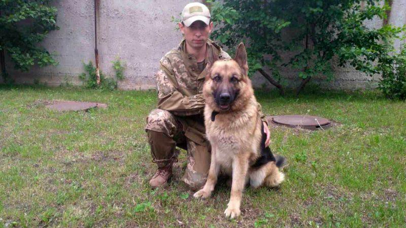 Поліцейський пес знайшов зниклу безвісти бабусю на дні глибокого яру