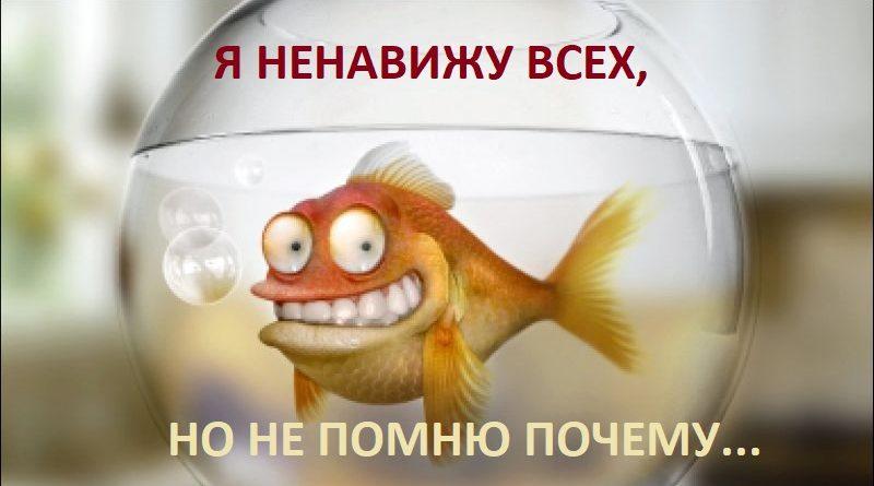 «Хочу доброго царя!», или Избиратель с памятью золотой рыбки