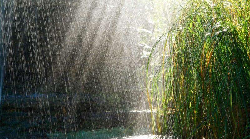Увага! Попередження про сильні дощі, грози, град та шквали