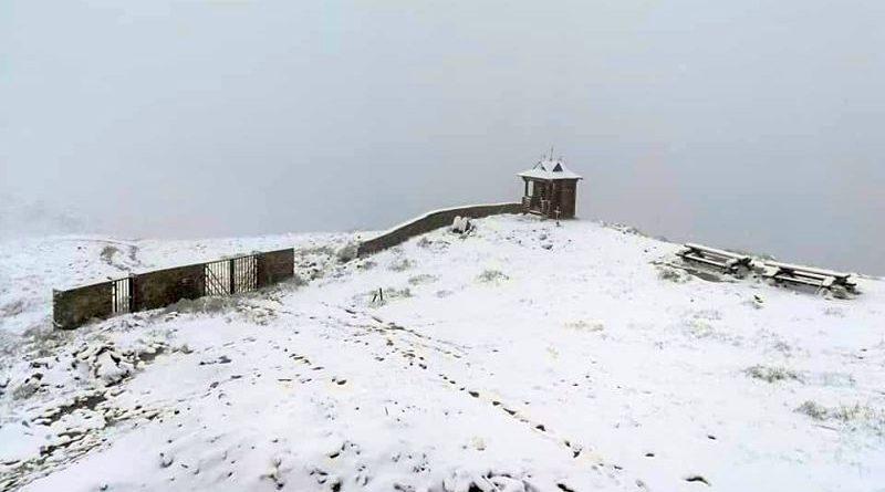 Гірські рятувальники надають допомогу групі туристів на Закарпатті (фото)