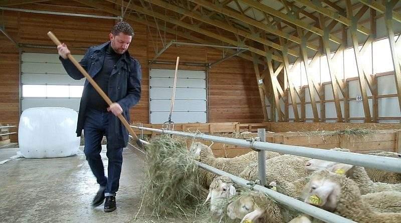 Для сімейних фермерських господарств спрощено оподаткування