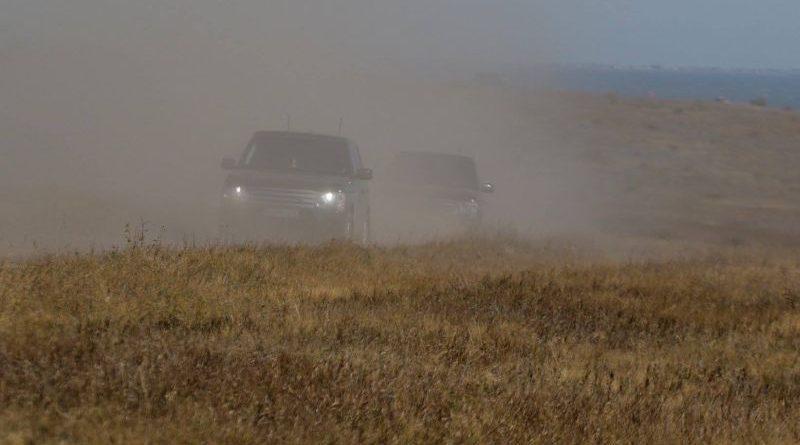 Один день Президента с Котом (фото, видео)
