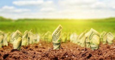 Убытки от коррупции = убытки от моратория на продажу земли