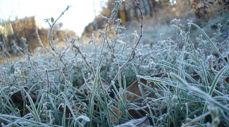 Увага! Попередження про заморозки в окремих областях України