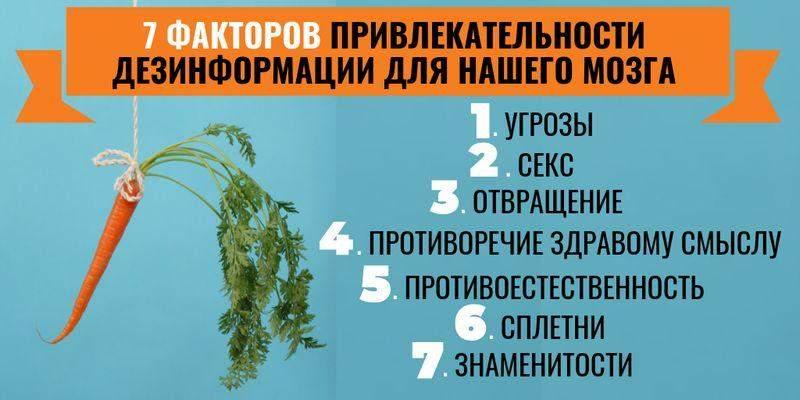 Обзор дезинформации пропагандистских СМИ – 31.08.2019