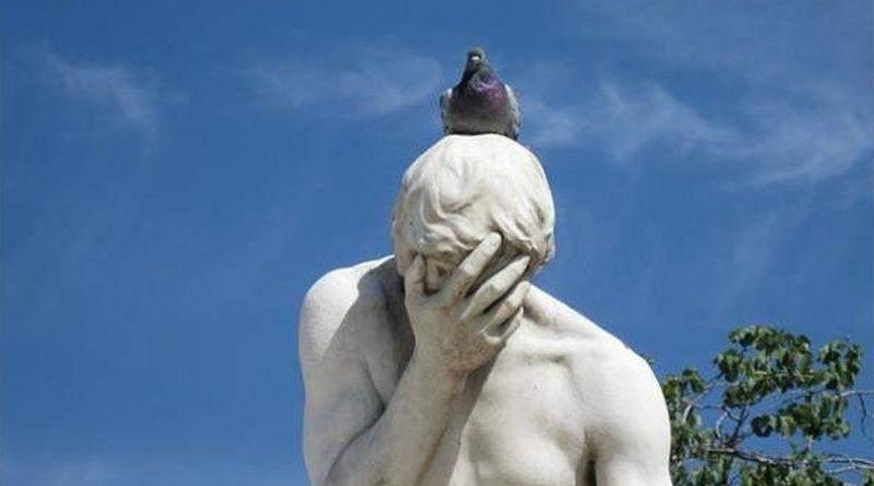 «Любовь и голуби», или «Меньше знаешь – крепче спишь»