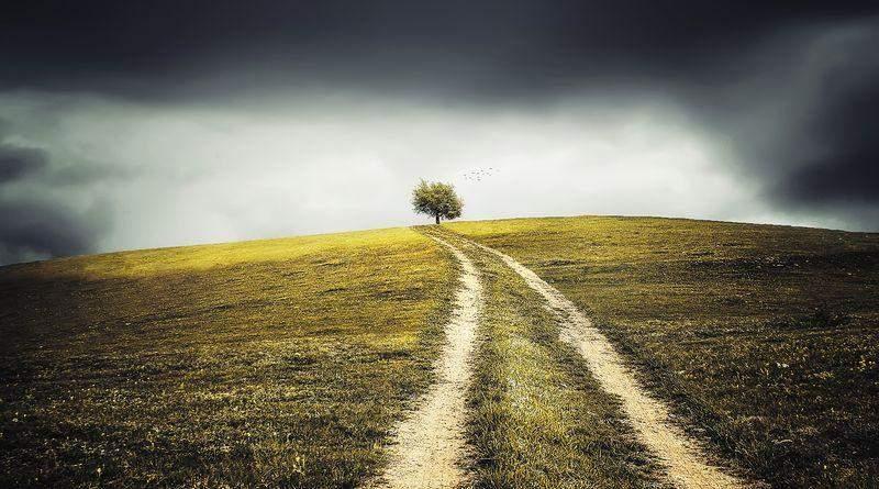Другой земли у нас нет и не будет