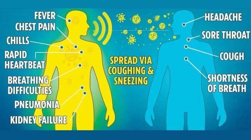 Нові можливості коронавірусу